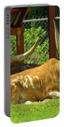 Big Horns Portable Battery Charger