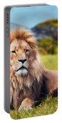 Big Lion Lying On Savannah Grass Portable Battery Charger