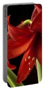 Big Red Portable Battery Charger