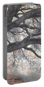 Big Sur Oak Portable Battery Charger