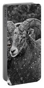 Bighorn Brothers In Grey Colorized Portable Battery Charger