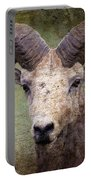 Bighorn Country Portable Battery Charger