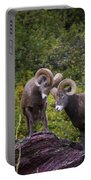 Bighorn Ram 4 Portable Battery Charger