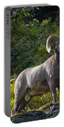 Bighorn Ram Portable Battery Charger