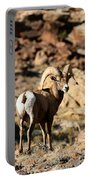 Bighorn Stare Portable Battery Charger