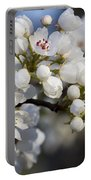Billows Of Fluffy White Bradford Pear Blossoms Portable Battery Charger