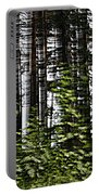 Birch Illusion Portable Battery Charger