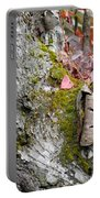Birch Study Portable Battery Charger