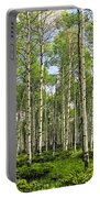 Birch Tree Grove In Summer Portable Battery Charger