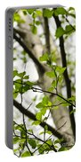 Birch Tree In Spring Portable Battery Charger