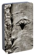 Birch Tree Spirits Portable Battery Charger