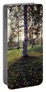 Birch Trees, Imatra, Finland Portable Battery Charger