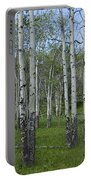 Birch Trees In A Grove No. 0148 Portable Battery Charger