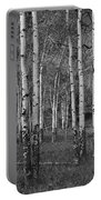 Birch Trees No.0148 Portable Battery Charger