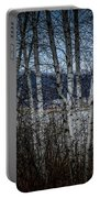 Birch Trees Portable Battery Charger