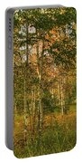 Birch Trees2 Portable Battery Charger