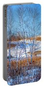 Birches And Cattails Portable Battery Charger
