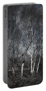 Birches Portable Battery Charger