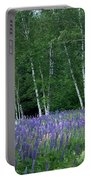Birches In The Blue Lupine Portable Battery Charger
