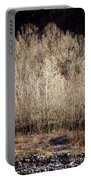 Birches In Winter Portable Battery Charger