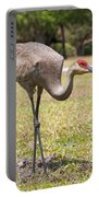 Bird At Work Portable Battery Charger