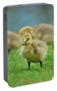 Bird - Baby Goose -leader Of The Pack Portable Battery Charger