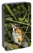 Bird - Baby Robin Portable Battery Charger