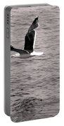 Bird Bw Portable Battery Charger