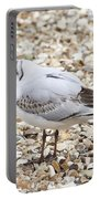 Bird Portable Battery Charger
