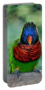 Bird In Your Face  Portable Battery Charger