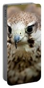 Bird Of Prey Flying Portable Battery Charger