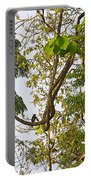 Bird On A Vine In Jungle Forest In Chitwan Np-nepal  Portable Battery Charger