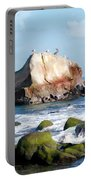 Bird Sentry Rock At Dana Point Harbor Portable Battery Charger