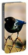 Bird's Eye Portable Battery Charger