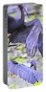 Birds - Fighting - Herons Portable Battery Charger