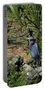 Birds In Florida Portable Battery Charger
