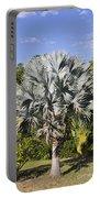 Bismarck Palm  Bismarckia Nobilis Portable Battery Charger
