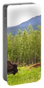 Bison Along Alaska Highway In British Columbia-canada Portable Battery Charger