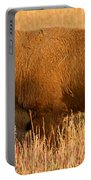 Bison At The Elk Ranch In Grand Teton National Park Portable Battery Charger