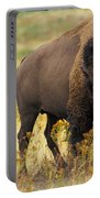 Bison Buffalo Portable Battery Charger