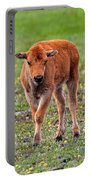 Bison Calf In The Flowers Yellowstone National Park Portable Battery Charger