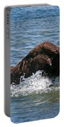 Bison Calf Running After Mama In Yellowstone National Park Portable Battery Charger
