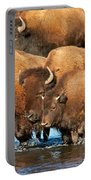 Bison Family In The Lamar River In Yellowstone National Park Portable Battery Charger