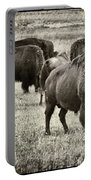 Bison Herd Bw Portable Battery Charger
