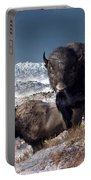 Bison Herd In Winter Portable Battery Charger