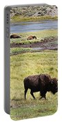 Bison Mother And Calf In Yellowstone National Park Portable Battery Charger