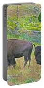 Bison Pair In Hayden Valley In Yellowstone National Park-wyoming  Portable Battery Charger
