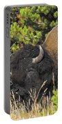 Bison's Portrait Portable Battery Charger