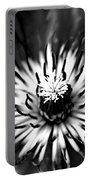 Black And White Clematis Portable Battery Charger