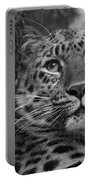 Black And White Amur Leopard Portable Battery Charger